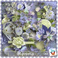 Myosotis  http://digital-crea.fr/shop/?main_page=index&manufacturers_id=173 http://www.mymemories.com/store/designers/Kastagnette http://www.digiscrapbooking.ch/shop/index.php?main_page=index&manufacturers_id=129 http://www.digi-boutik.com/boutique/index.php?main_page=index&cPath=22_271&sort=20a&page=2