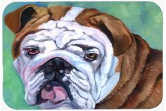 Features:  -English Bulldog collection.  -Made of tempered glass with design on the back of the cutting board.  -Heat resistant, non skid feet, and virtually unbreakable.  -Protect your counter top.
