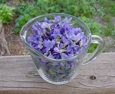Violet Jelly: Made with 2 heaping cups of fresh violet petals, boiling water, well-strained, clean lemon juice and liquid pectin