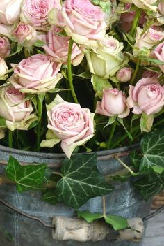 roses in an ivy encircled bucket
