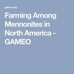 Farming Among Mennonites in North America Farming, North America