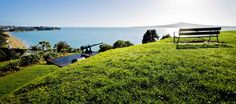 The 6 best picnic spots in Auckland! -We have done the hard work for you and compiled a list the best picnic spots in Auckland, plus a few suggestions on what to pack. Picnic Spot, Summer Picnic, New Zealand Cities, Auckland New Zealand, South Island, What To Pack, Places Ive Been, Tours, Travel