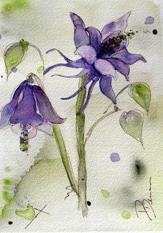 Columbine Watercolor Painting Original Botanical by dawndermanart