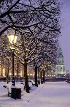 Winter in Germany - Dresden.