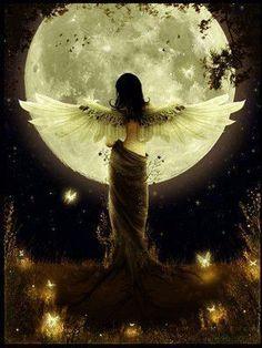We zoeken zo vaak de antwoorden in het daglicht. Maar 's nachts als je droomt kun je de diepgaandere antwoorden vinden.