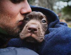 baby dog