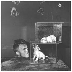 Roger Ballen - Shadow Chamber::Puppies in Fishtanks, 2000