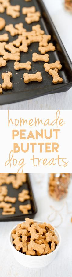 Making homemade snacks for your four-legged friend is a breeze with this simple peanut butter dog treat recipe. Pups will love the peanut butter flavor! #homemadedogtreat #diydogtreats