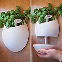 Bits and Pieces - Self Watering Wall Planter Urn - A Wonderful Wall Hanging Planter with Self Watering Abilities - Self Watering Herb Pot Comes with Plant Stake and Identification Tags