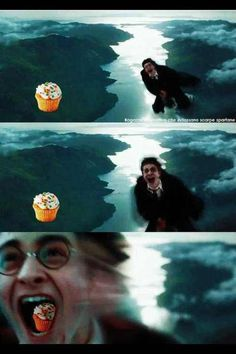 The Harry Potter fandom part 8 - Funny Estilo Harry Potter, Harry Potter Puns, Harry Potter Cupcakes, Harry Potter Cast, Slytherin, Hogwarts, Harry Potter Pictures, Fantastic Beasts, Funny Pictures