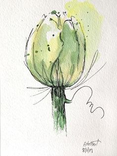 """Original artwork of a lovely single watercolor tulip rendered in pen, ink and watercolor. It is titled """"Green Tulip Watercolor"""" and is signed and dated at the bottom with the title on the back. The tulip is made up of warm shades of greens, burnt umber and yellow ochre on a white"""