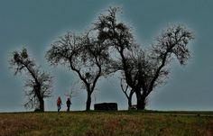 Heut war`s Wetter ideal, ... um sich zu bewegen, Walking ist ja keine Qual, und sich regen bringt doch Segen. :-)