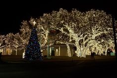 Johnson City, TX : Christmas Lights at Electric Coop...I am soooooooooooo ready