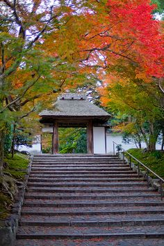Anraku-ji #japan #kyoto