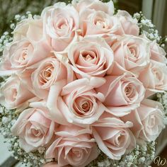 "24 Likes, 1 Comments - @laurelweddings on Instagram: ""Gorgeous blush pink rose bouquet with gypsophila collar #romantic #weddingflowers #sweetavalanche…"""