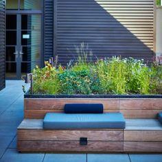 Piet Oudolf creates rooftop garden for New York condo building