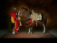 Yann Arthus Bertrand photo. Cheval africain, de type barbe Dongola Horse. The Dongola or Dongolawi is a riding horse native to Cameroon and to western Eritrea and Sudan. It is also common in western Africa countries, such as Mali. Although its name suggests, it does not originate from the Dongola region. It is strongly linked to the Barb horse and also bears resemblances to the Arab horse and is estimated to be partly descended from the Iberian horse during the 13th century.