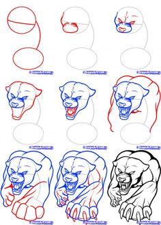 How to Draw a Black Panther, Step by Step, Rainforest ...