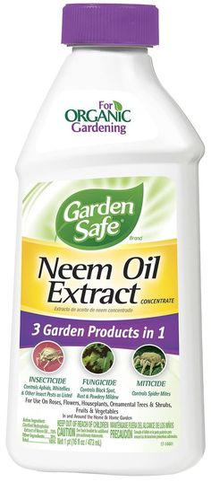 Neem Oil Organic Home Pest Control Garden Safe Fungicide Insecticide Miticide 14 Best Pest Control, Bug Control, Household Pests, Spider Mites, Bees And Wasps, Powdery Mildew, Neem Oil, Humming Bird Feeders, Organic Oil