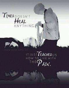 O tempo não cura nada. Ele só nos ensina como conviver com a dor.