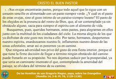 Misioneros de la Palabra Divina: REFLEXIÓN