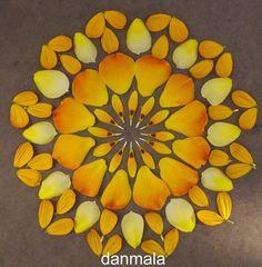 Danmala – I Mandala di Kathy Klein Mandala Art, Flower Mandala, Flower Rangoli, Best Rangoli Design, Rangoli Designs Images, Mexican Sunflower, Flower Circle, Pressed Flower Art, Ancient Symbols