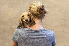 ASPCA Happy Tails: A Fresh Start for Aaron   ASPCA
