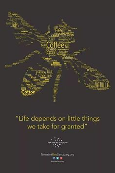 :) the little things are the largest...