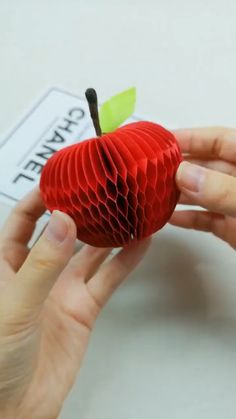 10 Fun and Easy Origami Inspirations DIY Tutorials Videos Diy Crafts Hacks, Diy Crafts For Gifts, Diy Home Crafts, Diy Arts And Crafts, Creative Crafts, Fun Crafts, Diy Projects, Instruções Origami, Paper Crafts Origami