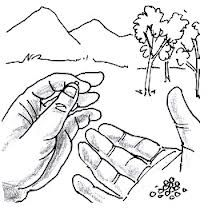 Parable of the Mustard Seed Coloring Page  Whats in the Bible