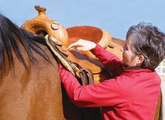 It's not how a saddle looks, but how it feels, that determines whether it's a good fit for your horse.