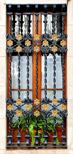 Window with floral grill work in a building in Barcelona - Sòcrates (by Arnim Schulz)