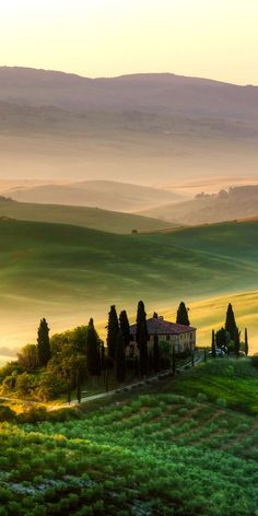 Tuscany Italy's most famous region, Tuscany covers images of olive groves, vi. Landscape Photography, Nature Photography, Travel Photography, Film Photography, Photography Ideas, Italy Vacation, Italy Travel, Places To Travel, Places To Visit