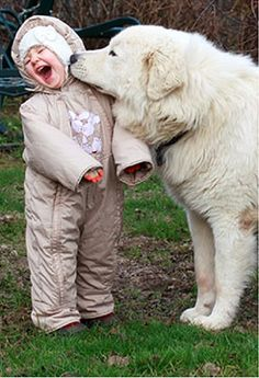 12 cute dogs with children. Separated here 12 photos of cute dogs with children for you to marvel at the purity, innocence and pure love. Dogs And Kids, Big Dogs, Animals For Kids, Animals And Pets, Baby Animals, Dogs And Puppies, Funny Animals, Cute Animals, Doggies