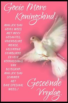 Evening Greetings, Goeie More, Afrikaans Quotes, Morning Greetings Quotes, Happy Friday, Poems, Beautiful Pictures, Sayings, Van