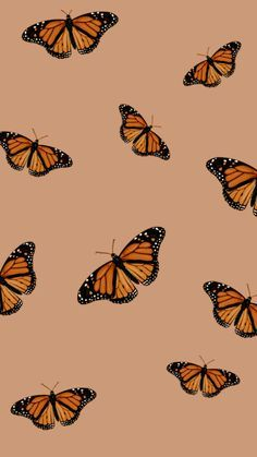 Aesthetic Butterfly Phone Wallpaper - - Learn how to create your very own custom lock screen wallpaper with our step-by-step tutorials! All you need is a few minutes to become a wallpaper wiz! Glitter Wallpaper Iphone, Beste Iphone Wallpaper, Butterfly Wallpaper Iphone, Orange Wallpaper, Halloween Wallpaper Iphone, Fall Wallpaper, Iphone Background Wallpaper, Lock Screen Wallpaper, Iphone Wallpapers