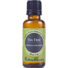 Top 8 Uses For Tea Tree Oil - Acne: Mix 40 drops of tea tree oil with 1 oz of coconut oil in a glass container with a tight fitting lid. Apply lightly to the acne twice a day after cleansing. (Keep well away from the eyes, and test the mixture on the inside of your forearm, waiting for at least 24 hours to make sure there is no reaction before using it on your face or other acne-prone areas.)