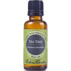 Top 8 Uses Of Tea Tree Oil