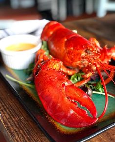 """Edible Orlando on Instagram: """"@reelfishcoastal turns 3 this weekend, and to celebrate, they're offering 1.5-pound Maine lobsters for just $33 (they're usually $48!).…"""" Whats In Season, Orlando, Restaurants, Instagram Images, Lobsters, Dining, Maine, Videos, Food"""