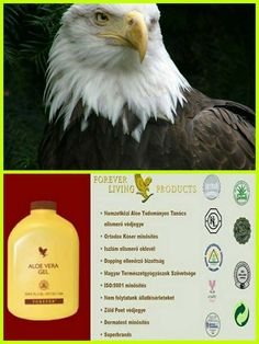 Forever Life, Forever Living Products, Aloe Vera Gel, Seals, Facebook, Seal