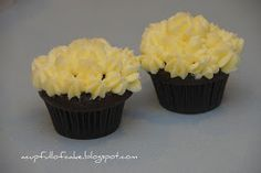 A Cup Full of Cake: Just two Cupcakes. Literally