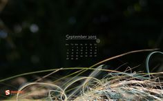 Desktop Wallpaper Calendars: September 2015