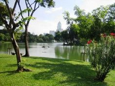 Lumphini Park, Bangkok.  The location of Sam and Kayla's first kiss.  'A hand stroked her hair, even though it was matted and tangled from a day of water fighting, sweating and dancing. Another hand traced down her jawline, from ear to her chin, then gently nudged her head upwards so she was nose to nose with him. His breath tickled her sun-chapped lips, and he leaned in, tenderly brushing them with his.'
