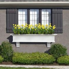 Mayne Yorkshire 12 in. x 60 in. Vinyl Window Box-4825W at The Home Depot - under the two windows flanking the door into the backyard?