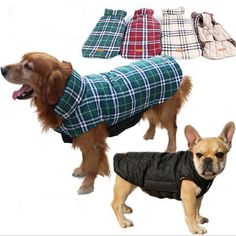 Like if you want this Cosy Plaid Reversible Dog Coat     FREE worldwide shipping    https://www.pawsify.com/product/cosy-plaid-reversible-dog-coat/