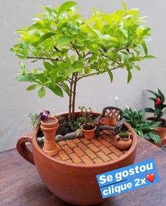 Here are the Diy Fairy Garden Design Ideas. This article about Diy Fairy Garden Design Ideas was posted under the Outdoor category by our team at August 2019 at am. Hope you enjoy it and don't forget to . Indoor Fairy Gardens, Mini Fairy Garden, Fairy Garden Houses, Miniature Fairy Gardens, Fairies Garden, Miniature Plants, Container Fairy Garden, Fairy Garden Pots, Tea Gardens