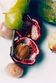 Wolfgang Tillmans, Pear, passion fruit & lychee  #tillmans #lempertz