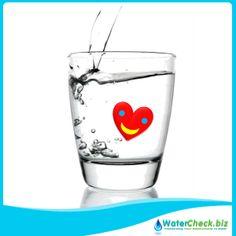 It is a valvular heart disease. Mitral Valve Prolapse, Heart Health, Heart Disease, Cats, Gatos, Cardiovascular Disease, Cat, Kitty, Kitty Cats