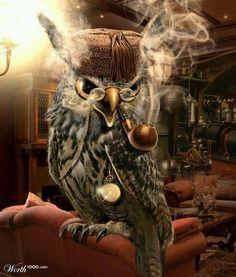 'Steampunk Owl' (illustrator unknown)