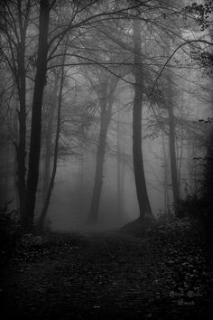 Tristesse by ArkanumTenebrae